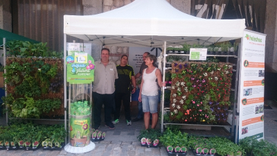 Zona clientes anuncios vivero en madrid legan s for Viveros madrid norte