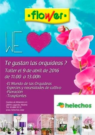 orquidies-garden-web1460041899.JPG