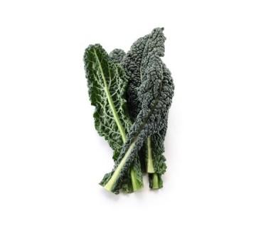 Planta De Exterior - Plantas De Huerto - Col Kale Pack 12 Plantones
