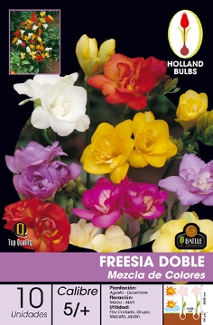 Bulbos - Todas - Bulbos Freesia Doble Mezcla 10 Uds
