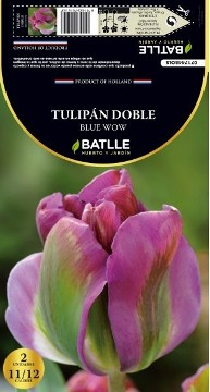 Bulbos - Bulbos Otoño - BULBOS DE TULIPAN DOBLE BLUE WOW 11/12 2UDS